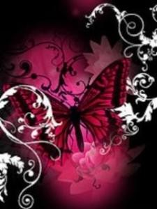 Dark_Pink_Butterfly